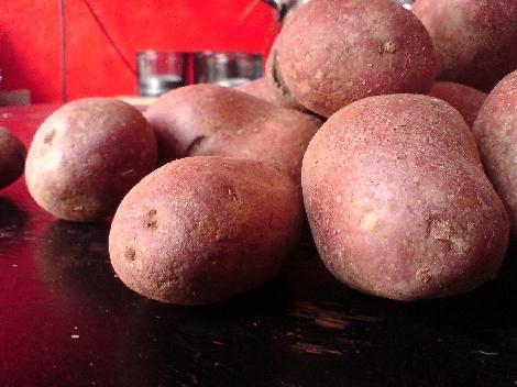 Rotschalige Laura Kartoffeln blass