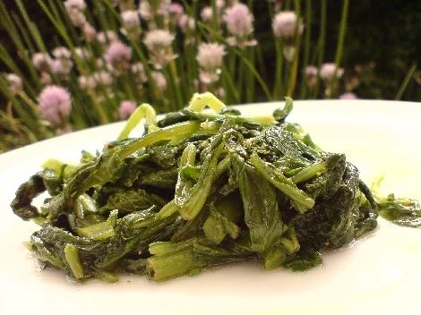 disteln und schwarzer senf mit olivenoel