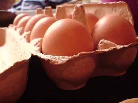eier in form