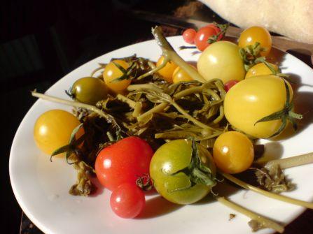 kapernblaetter mit klitzekleinen tomaten