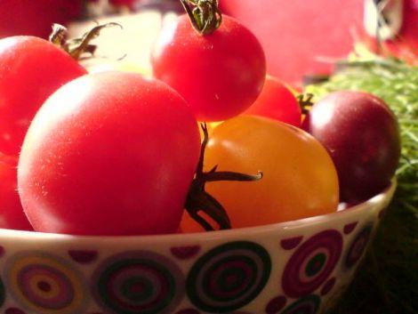 kleine bunte tomaten
