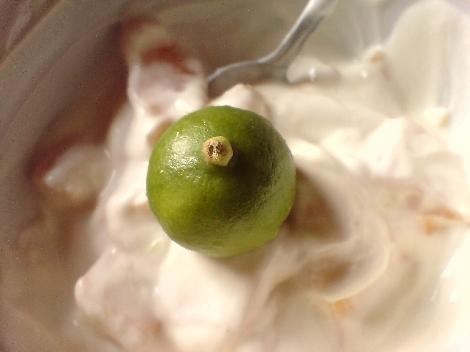 limequat ganz auf obstjoghurt