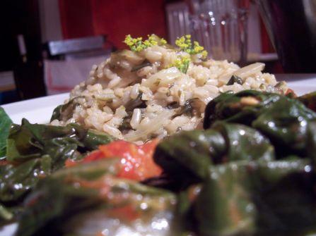 mangold-risotto mit wilder-fenchel-bluete