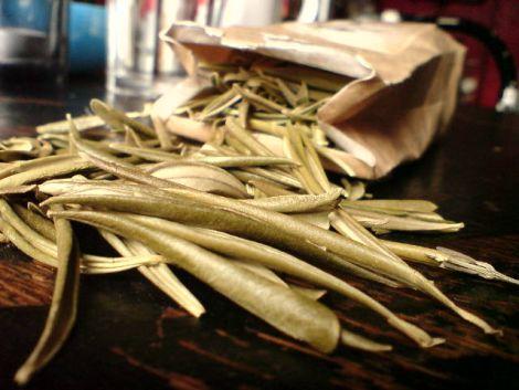 olivenblaettertee