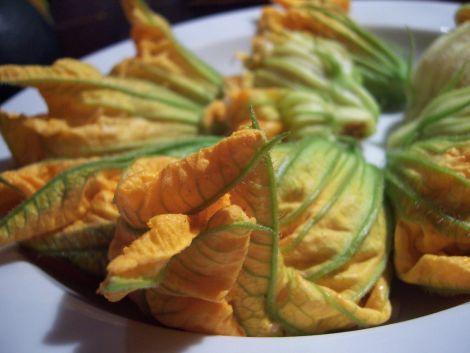 zucchini und kuerbisblueten in vorbereitungsphasenabschnittszelebrierungsdarreichungsvorschlag